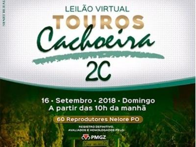 Leilão Virtual Touros Cachoeira 2C