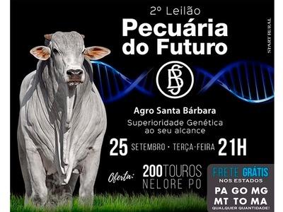 2° Leilão Pecuária do Futuro - Agro Santa Bárbara