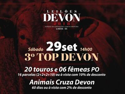 3º Leilão Top Devon