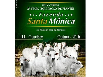 Leilão Virtual Santa Mônica