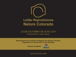 Leilão Reprodutores Nelore Colorado