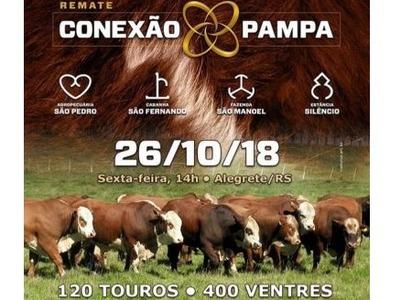 Remate Conexão do Pampa
