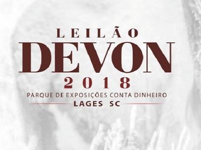 Leilão Devon