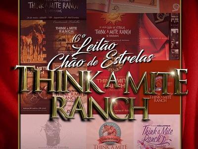 16º Leilão Chão de Estrelas Think A Mite Ranch