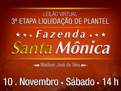 Leilão Virtual 3ª Etapa Liquidação de Plantel Fazenda Santa Mônica