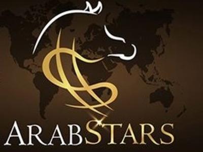 Leilão Virtual Arabstars