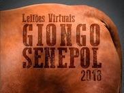 Leilão Virtual Giongo Senepol - Reprodutores