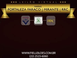 Leilão Virtual Haras Fortaleza Faraco, Mirante e RRC