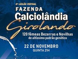 3º Leilão Virtual Fazenda Calciolândia