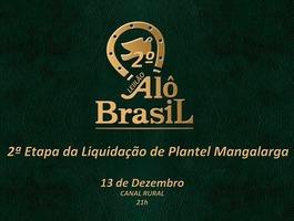 2º Leilão Virtual Alô Brasil