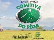 53º Leilão Virtual Comitiva do Pêga