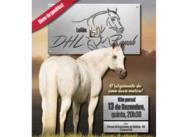 Leilão DHL Ranch
