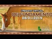 1º Remate Virtual de Fundamento
