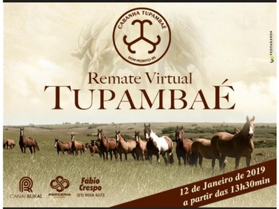 Remate Virtual Tupambaé