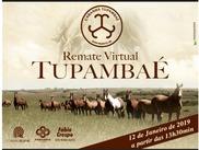 Remate Virtual Tupambaé