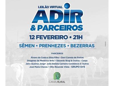Leilão Virtual Adir & Parceiros