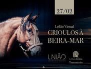 8º Leilão Crioulos à Beira Mar