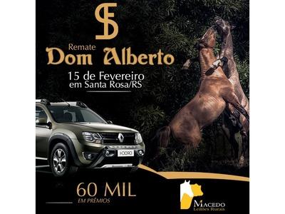 Leilão Dom Alberto
