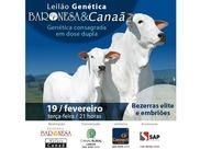 Leilão Genética Baronesa & Canaã