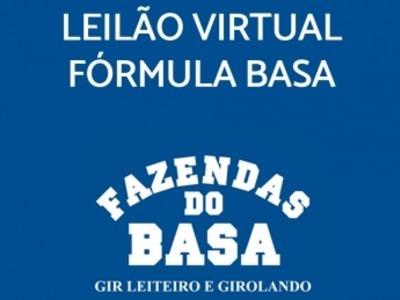 Leilão Virtual Fórmula Basa