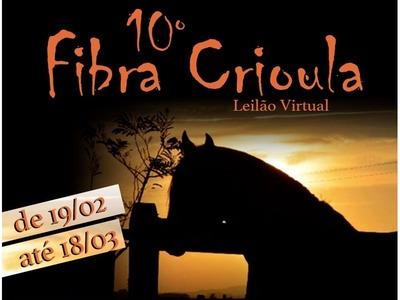 10º Leilão Fibra Crioula - Virtual