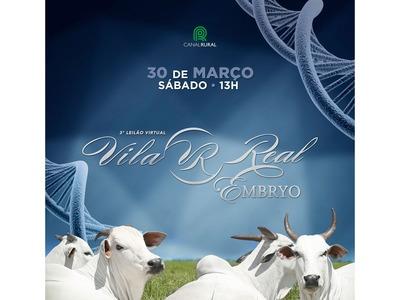 Leilão Virtual Vila Real Embryo