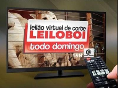 LEILÃO LEILOBOI VIRTUAL DE CORTE
