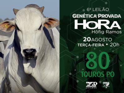 6º Leilão Genética Provada HoRa  Höfig Ramos