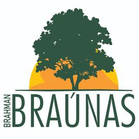 Fazenda Braúnas